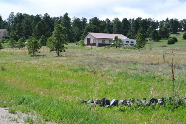 13925 Double Tree Ranch Circle, Elbert, CO 80106 (#1809441) :: The Galo Garrido Group