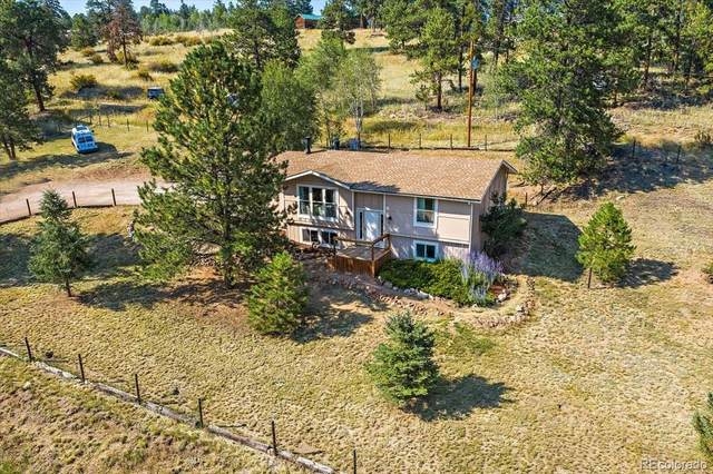 33511 Dotty Road, Pine, CO 80470 (MLS #1811678) :: Bliss Realty Group