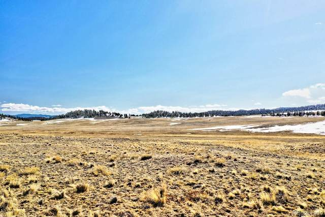 166 Navajo Trail, Hartsel, CO 80449 (#1812590) :: Bring Home Denver with Keller Williams Downtown Realty LLC