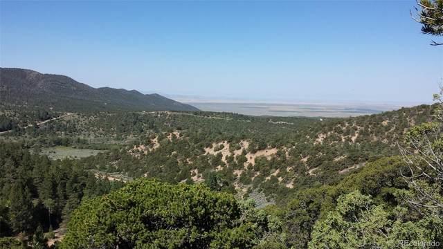 2648 Weller Road, Fort Garland, CO 81133 (#1812613) :: iHomes Colorado