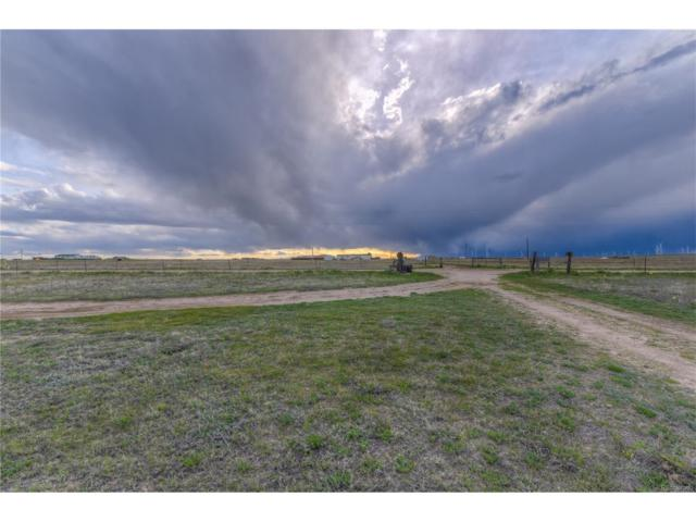 5955 Mulberry Road, Calhan, CO 80808 (MLS #1812723) :: 8z Real Estate