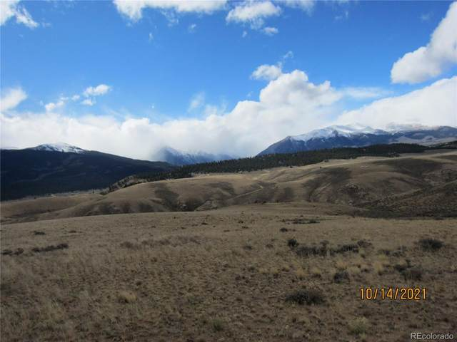 Prcl 7 Trct 9, Twin Lakes, CO 81251 (#1816415) :: The DeGrood Team