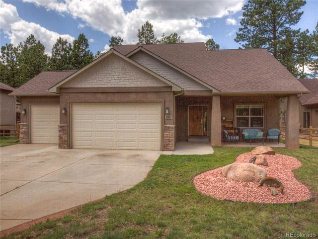 1102 Ptarmigan Drive, Woodland Park, CO 80863 (MLS #1816733) :: 8z Real Estate