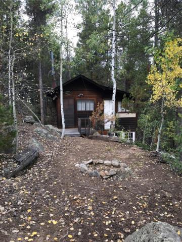96 Woodbine Place, Black Hawk, CO 80403 (MLS #1818254) :: Kittle Real Estate