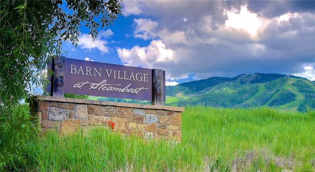 795 Twilight Lane, Steamboat Springs, CO 80487 (#1820793) :: The Heyl Group at Keller Williams