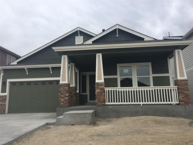 1755 Sandy Shore Lane, Monument, CO 80132 (#1821378) :: The DeGrood Team