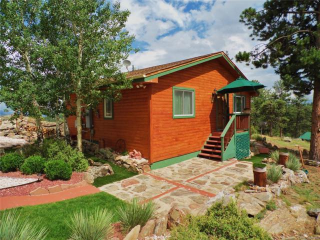 21 Chickadee Lane, Bailey, CO 80421 (MLS #1822948) :: 8z Real Estate