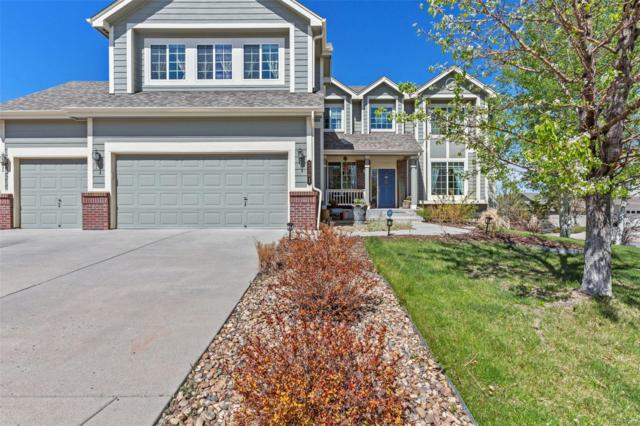 3361 Cremello Court, Castle Rock, CO 80104 (#1823176) :: The HomeSmiths Team - Keller Williams
