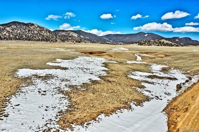 5251 Mesa Road, Hartsel, CO 80449 (MLS #1824234) :: Find Colorado