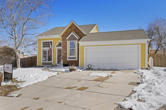 10312 Robb Court, Westminster, CO 80021 (MLS #1831356) :: Kittle Real Estate