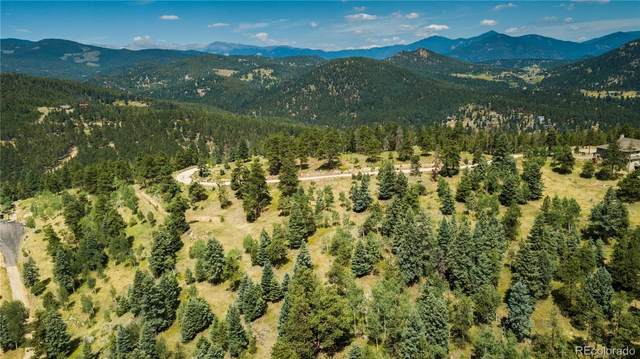 29653 Meadow Spur Lane, Evergreen, CO 80439 (#1834774) :: Portenga Properties - LIV Sotheby's International Realty