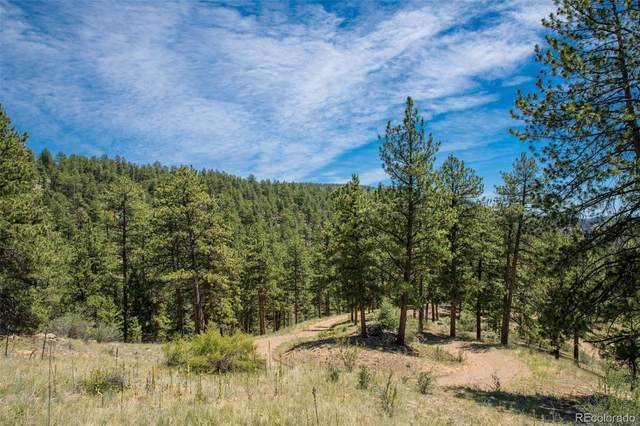 14433 Lot 3 Elk Creek Road, Pine, CO 80470 (#1836210) :: The HomeSmiths Team - Keller Williams