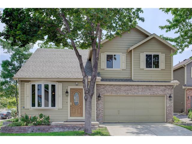 8352 Sunnyside Place, Highlands Ranch, CO 80126 (#1839052) :: The City and Mountains Group