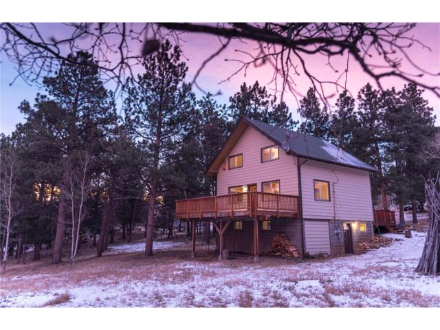 1310 Burland Drive, Bailey, CO 80421 (MLS #1839165) :: 8z Real Estate