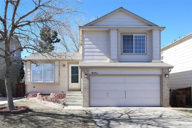 9731 Autumnwood Place, Highlands Ranch, CO 80129 (#1845379) :: The Peak Properties Group