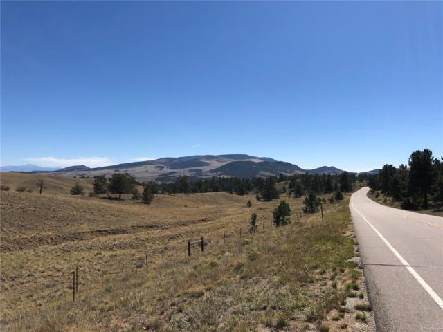 11 Olander Trail, Guffey, CO 80820 (MLS #1846232) :: 8z Real Estate