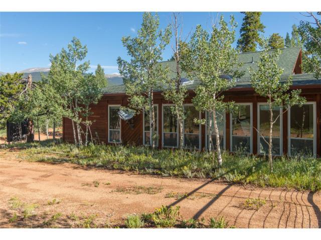 116 Price Street, Bailey, CO 80421 (MLS #1850469) :: 8z Real Estate