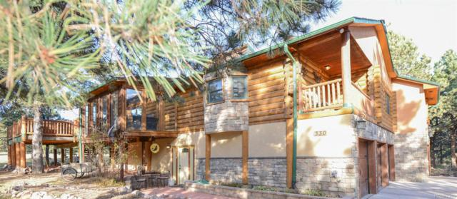 330 Silver Saddle Road, Monument, CO 80132 (#1851031) :: The Heyl Group at Keller Williams