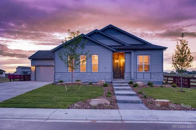 904 Hitch Horse Drive, Windsor, CO 80550 (MLS #1852351) :: Kittle Real Estate