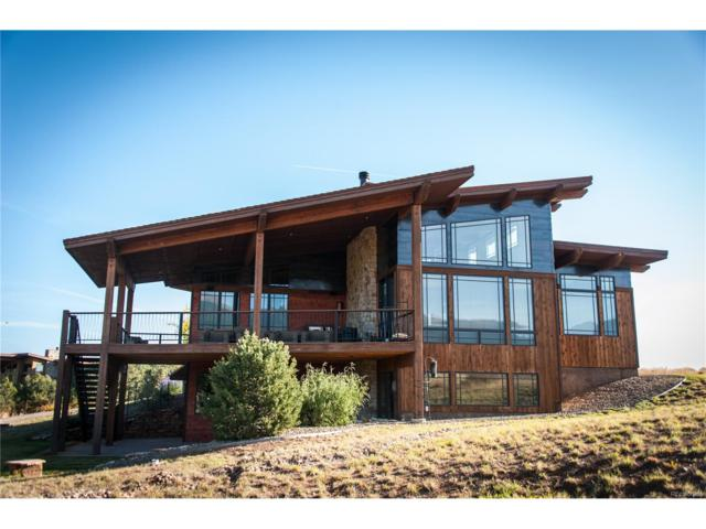 1956 Cowboy Way, Cotopaxi, CO 81223 (#1855176) :: The Peak Properties Group