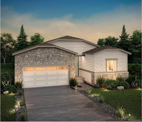 2140 Villageview Lane, Castle Rock, CO 80104 (#1857614) :: Wisdom Real Estate