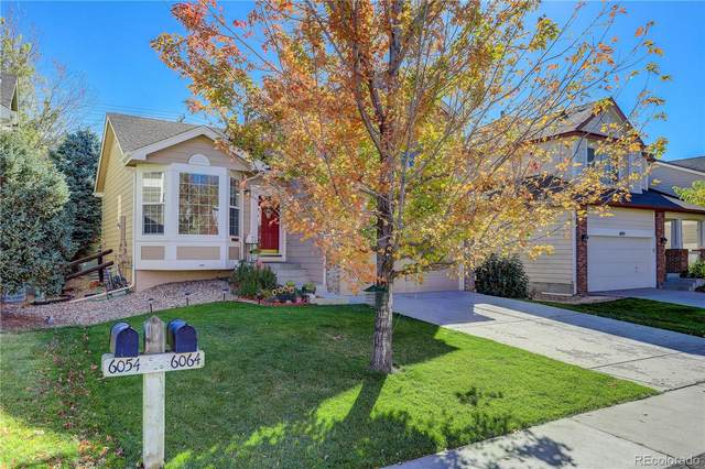 6064 S Zeno Court, Aurora, CO 80016 (MLS #1863075) :: Kittle Real Estate