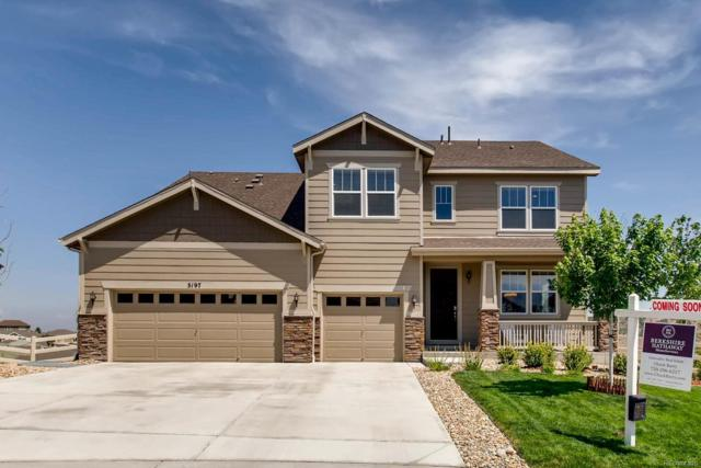 3197 Cool Meadow Place, Castle Rock, CO 80104 (#1864044) :: Hometrackr Denver