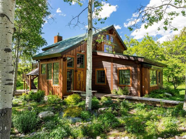 27315 E Whitewood Drive, Steamboat Springs, CO 80487 (#1866038) :: The Griffith Home Team