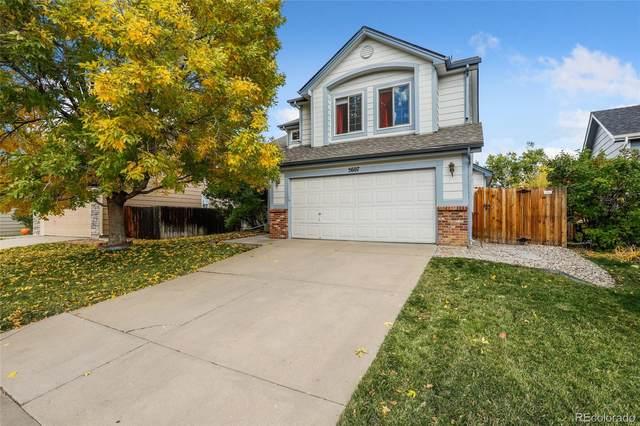 5607 Spruce Avenue, Castle Rock, CO 80104 (#1866368) :: Venterra Real Estate LLC