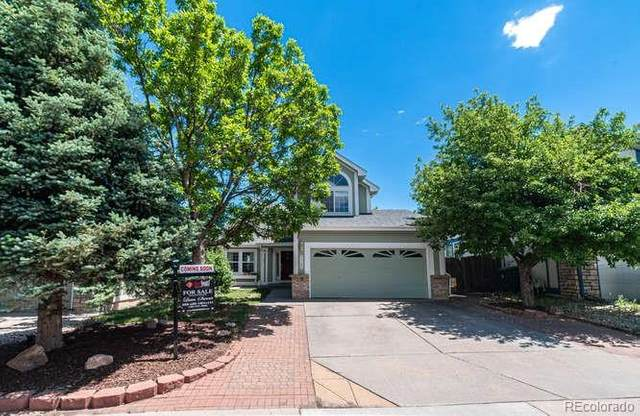 7720 Halleys Drive, Littleton, CO 80125 (#1868522) :: Colorado Home Finder Realty