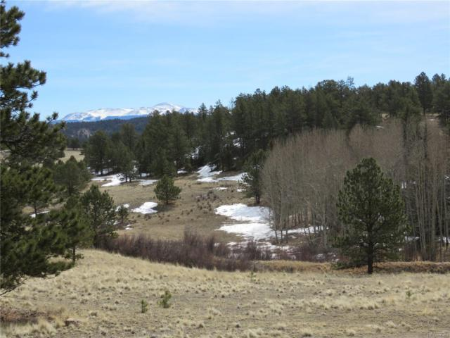 1562 County 403 Road, Lake George, CO 80827 (MLS #1870009) :: 8z Real Estate
