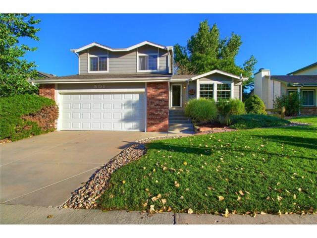 501 Snowy Owl Place, Highlands Ranch, CO 80126 (#1870074) :: The Sold By Simmons Team