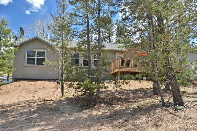41 Turkey Circle, Florissant, CO 80816 (MLS #1870304) :: 8z Real Estate