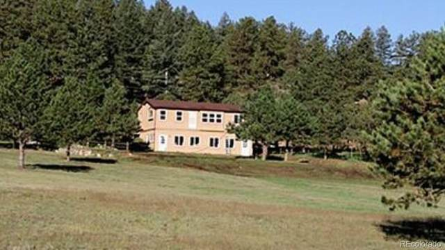 17795 County Rd 1, Florissant, CO 80816 (#1870789) :: The Artisan Group at Keller Williams Premier Realty