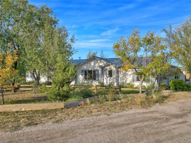 8590 Squirrel Creek Road, Fountain, CO 80817 (#1872952) :: Wisdom Real Estate