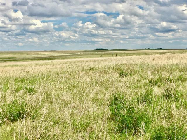 0 Countyy 74 Road, Matheson, CO 80830 (MLS #1875894) :: 8z Real Estate