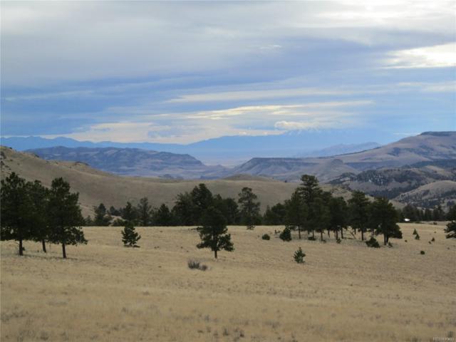 Tbd Antelope Creek Ridge Road, Saguache, CO 81149 (#1878647) :: The DeGrood Team