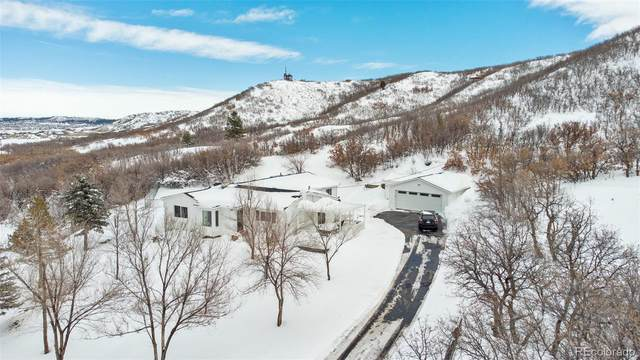 262 W Wolfensberger Road, Castle Rock, CO 80109 (#1880806) :: The Dixon Group