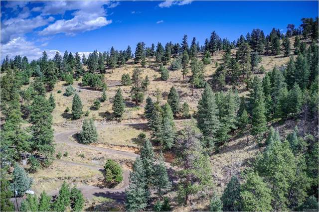 970 & 980 Soda Creek Road, Evergreen, CO 80439 (#1883985) :: The HomeSmiths Team - Keller Williams