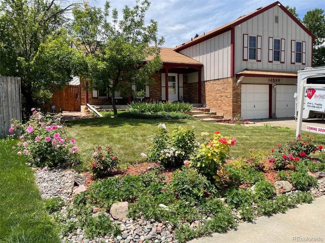 12533 W Stanford Drive, Morrison, CO 80465 (#1885027) :: The Gilbert Group