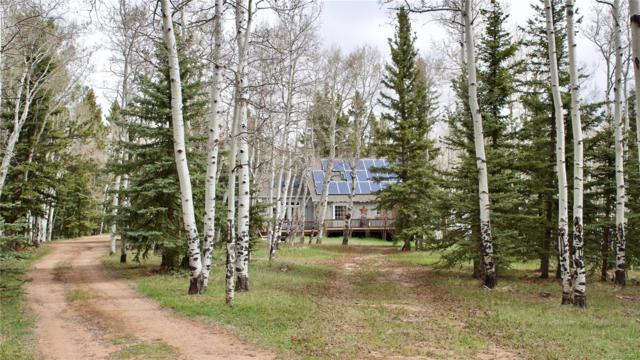 1238 County Road 5, Divide, CO 80814 (#1887178) :: James Crocker Team