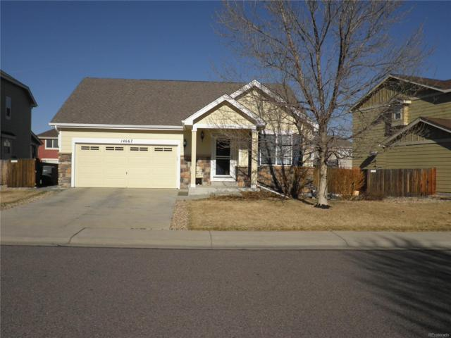 14667 Race Street, Thornton, CO 80602 (#1892694) :: The Peak Properties Group