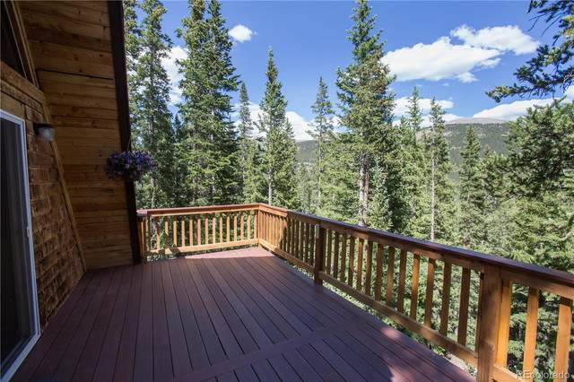 1508 Quartzville Road, Alma, CO 80420 (#1894929) :: Wisdom Real Estate