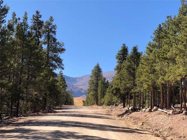 179 Peak View Drive, Twin Lakes, CO 81251 (#1895231) :: 5281 Exclusive Homes Realty