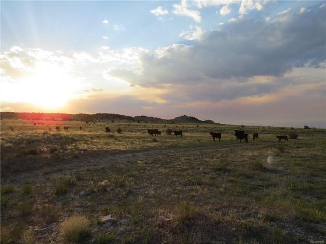 35 Salt Creek Road, Pueblo, CO 81004 (#1896138) :: Arnie Stein Team | RE/MAX Masters Millennium