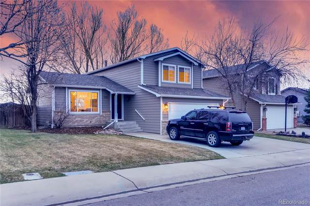336 Dunne Drive, Fort Collins, CO 80525 (#1900937) :: My Home Team