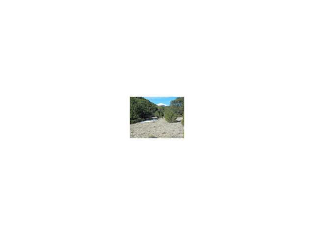 Trail Ridge Road, Coaldale, CO 81222 (MLS #1901887) :: 8z Real Estate