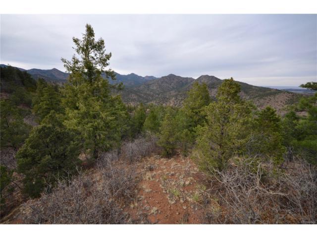 Lot 20 Big Spruce Heights, Colorado Springs, CO 80926 (#1908063) :: Wisdom Real Estate