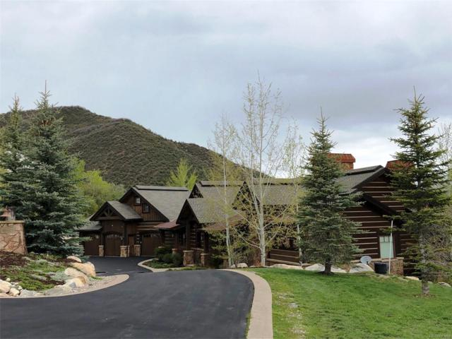36120 Quarry Ridge Road, Steamboat Springs, CO 80487 (#1909534) :: HomePopper