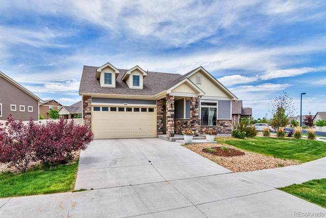5289 Genoa Street, Denver, CO 80249 (MLS #1913496) :: 8z Real Estate